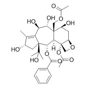13-O-去乙酰基红豆杉醇Z