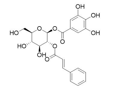 2-肉桂酰-1-没食子酰葡萄糖
