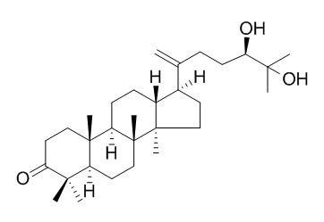 24,25-二羟基达马树脂-20-烯-3-酮