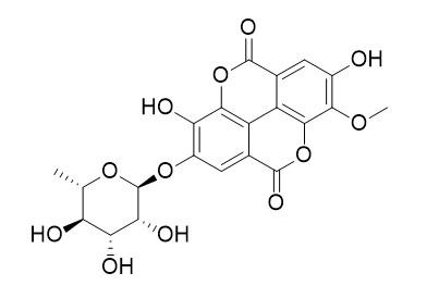 3-O-methylellagic acid 4'-O-alpha-L-rhamnopyranoside