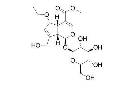 6-Ethoxygeniposide