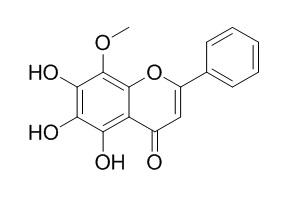 6-羟基汉黄芩素