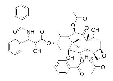7-表紫杉醇