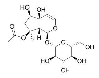 8-O-乙酰哈巴苷