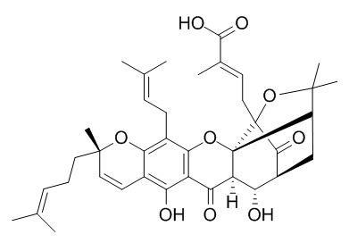 9R-10alpha-羟基表藤黄酸