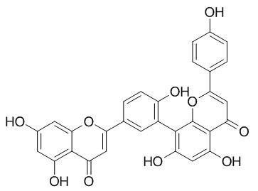 穗花杉双黄酮; 阿曼托黄酮