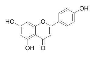 芹菜素; 芹黄素; 5,7,4'-三羟基黄酮