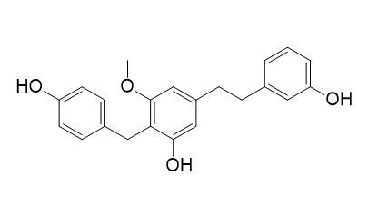 Arundinin