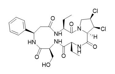 Astin C