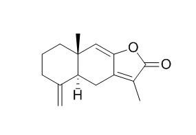 Atractylenolide I