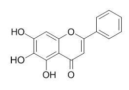 黄芩素; 黄芩苷元