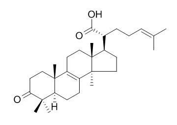 Beta-Elemonic acid