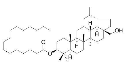 软脂酸桦木脑酯