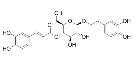 木通苯乙醇苷A