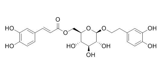 木通苯乙醇苷B