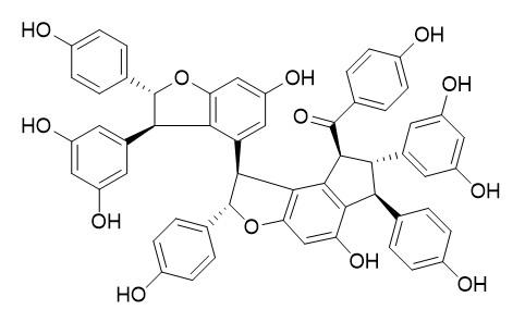 Caraganaphenol A