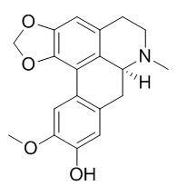 Cassythicine