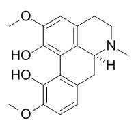 Corytuberine