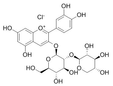 氯化失车菊素-3-O-桑布双糖苷