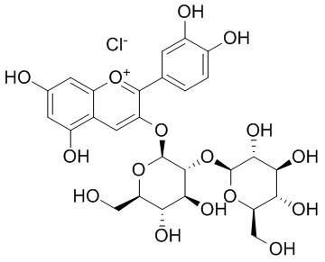 氯化矢车菊素-3-O-槐糖苷
