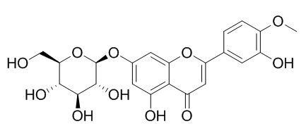 香叶木素7-O-beta-D-葡萄糖苷