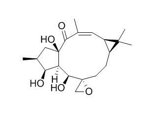 环氧续随子醇