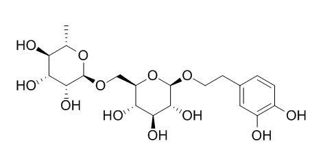 连翘酯苷E