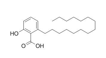 银杏酸C15:0