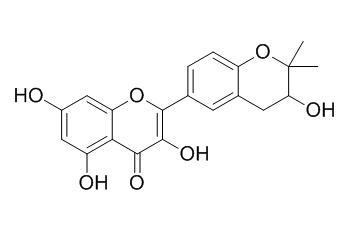 Glycyrrhiza flavonol A
