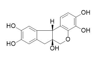 ヘマトキシリン