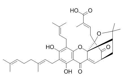 异新藤黄酸