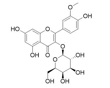 Isorhamnetin 3-O-galactoside
