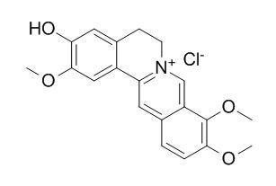 盐酸药根碱