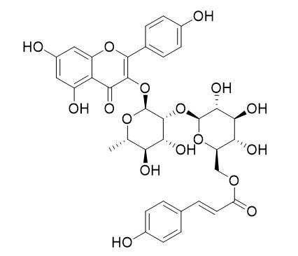 Kaempferol 3-O-beta-(6''-p-coumaroyl)glucopyranosyl(1->2)-alpha-L-rhamnopyranoside
