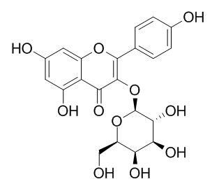 山奈酚3-O-半乳糖苷