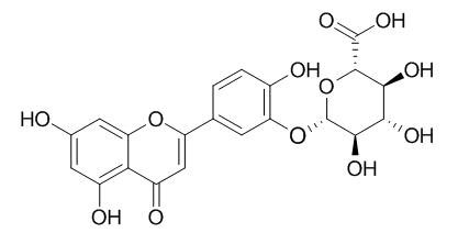 Luteolin-3-O-beta-D-glucuronide
