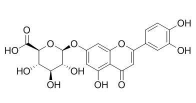 Luteolin-7-O-glucuronide