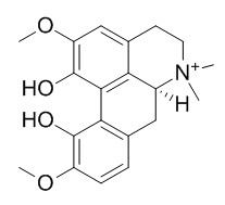 Magnoflorine