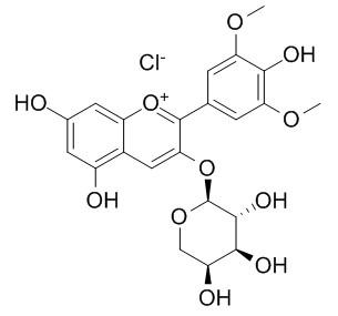 氯化锦葵色素-3-O-阿拉伯糖苷