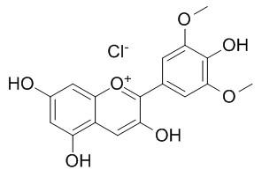 氯化锦葵色素
