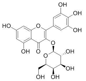 杨梅酮3-O-半乳糖苷