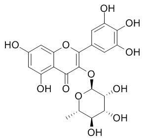 杨梅苷; 五羟基黄酮-3-鼠李糖苷