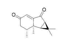 Nardoaristolone B