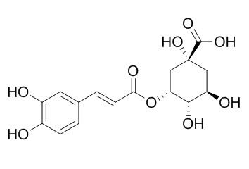 Neochlorogenic acid