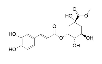 Neochlorogenic acid methyl ester