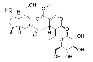 Nudifloside D