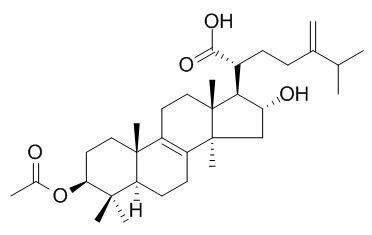 Pachymic acid