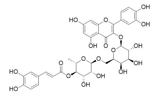 槲皮素-3-O-[4-O-反式-咖啡酰基-alpha-L-鼠李糖-(1→6)-beta-D-半乳糖苷]
