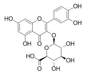槲皮素3-O-葡萄糖酸苷