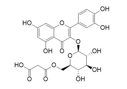 Quercetin 3-O-malonylglucoside